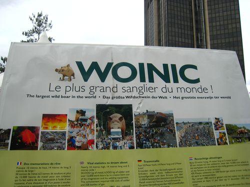Woinic