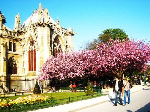 Jardin de l'archevêché 10