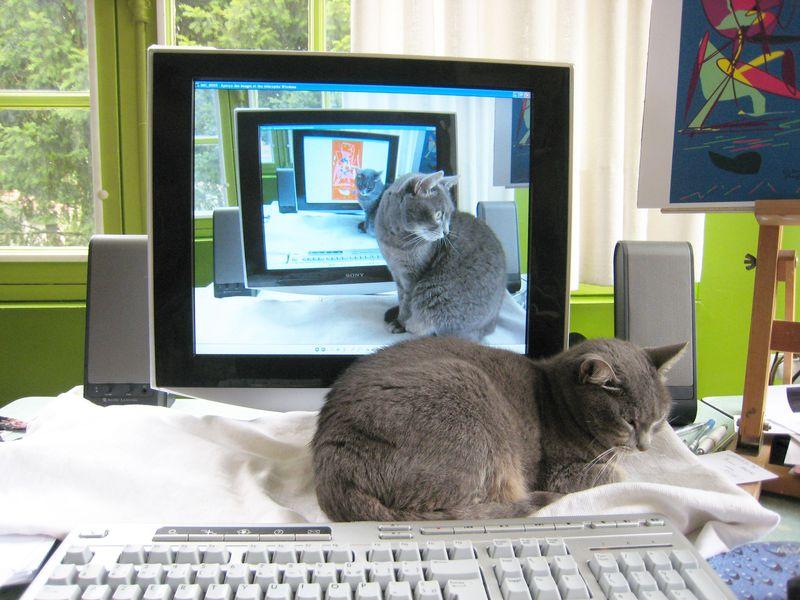 Lucie-et-l'ordinateur